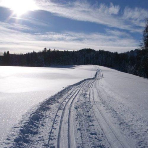 SVO-Winter2